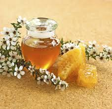 a jar of honey and some honey comb surrounded by the white blossom of the manuka bush from new zealand