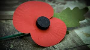 This image shows a single red British Legion Poppy on the ground
