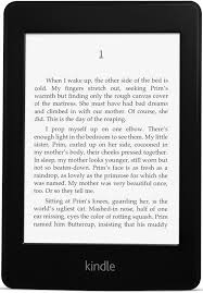 this image shows an e reader