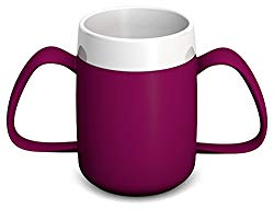 this image shows a two handled mug in a blackberry colour